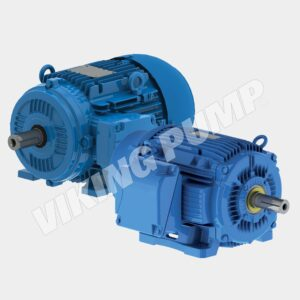 Viking-Pump-Weg-Motors